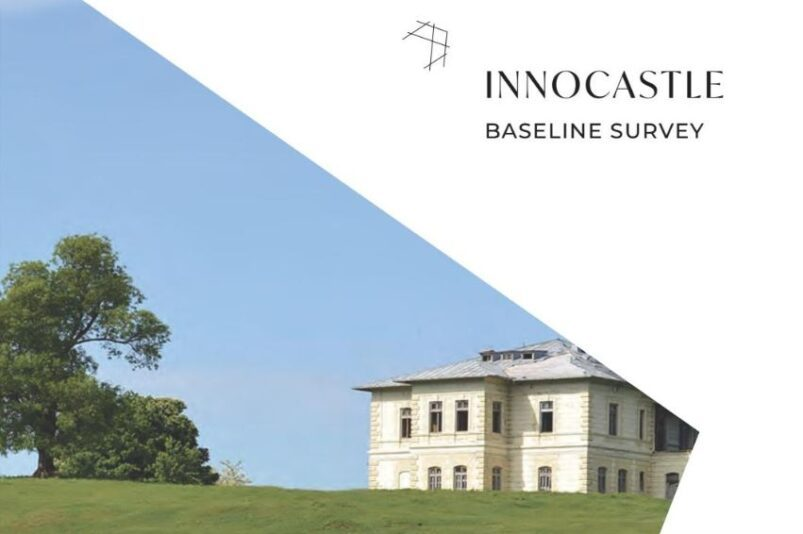 Innocastle baseline survey