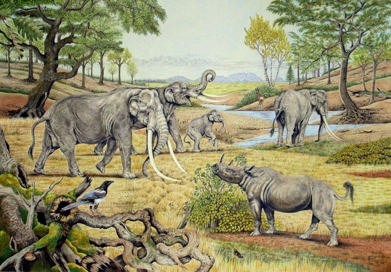 Southern Germany around 120.000 years ago. Image: Elke Gröning