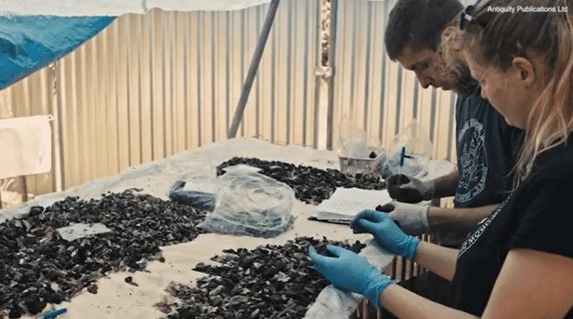 """Archäologische Funde im polnischen """"Todestal"""". Bild: Sergo UfoSergo über YouTube"""