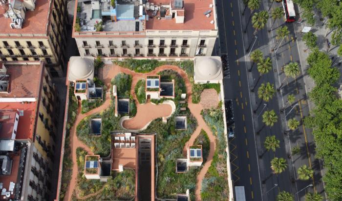 Xifre's Roof: Drijvende Wilde Tuin (Spanje)